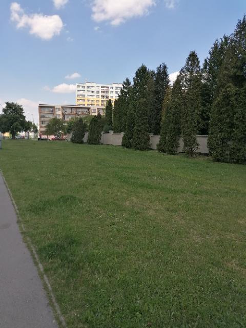 Hřbitov Chodov
